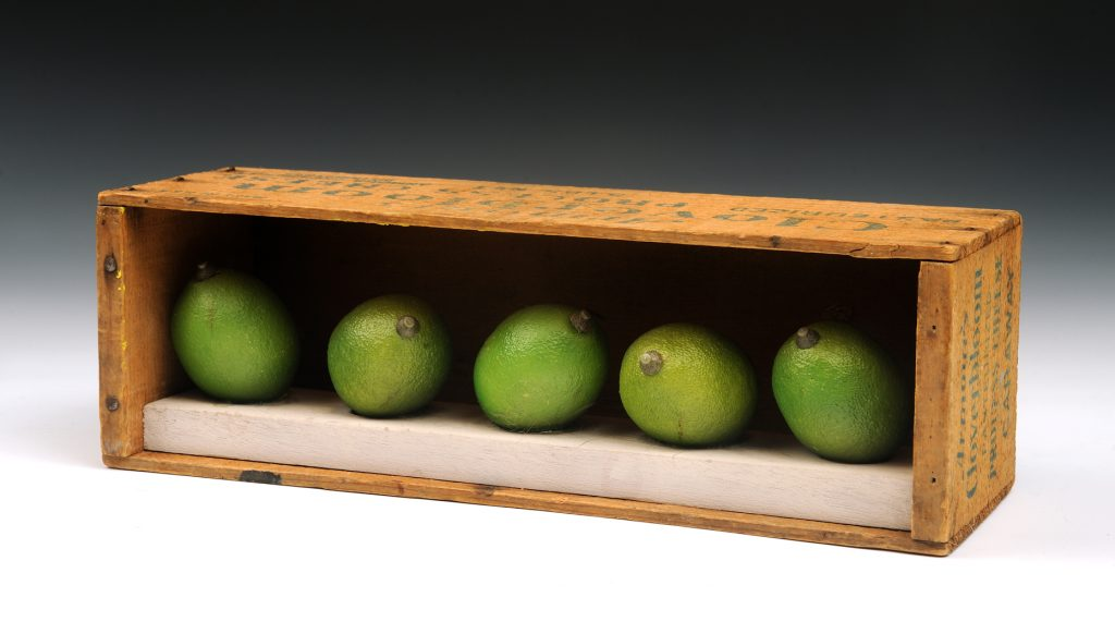Limes in a Vintage Box, 11 1/2 inches x 3 1/2 inches