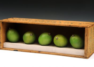 Limes in a Box 3 ½ x 11 ½