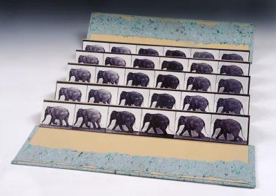 Muybridge Accordion, Elephant Walk 1