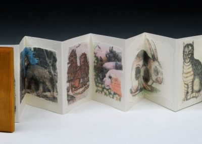 Lovely Creatures, Accordion Binding