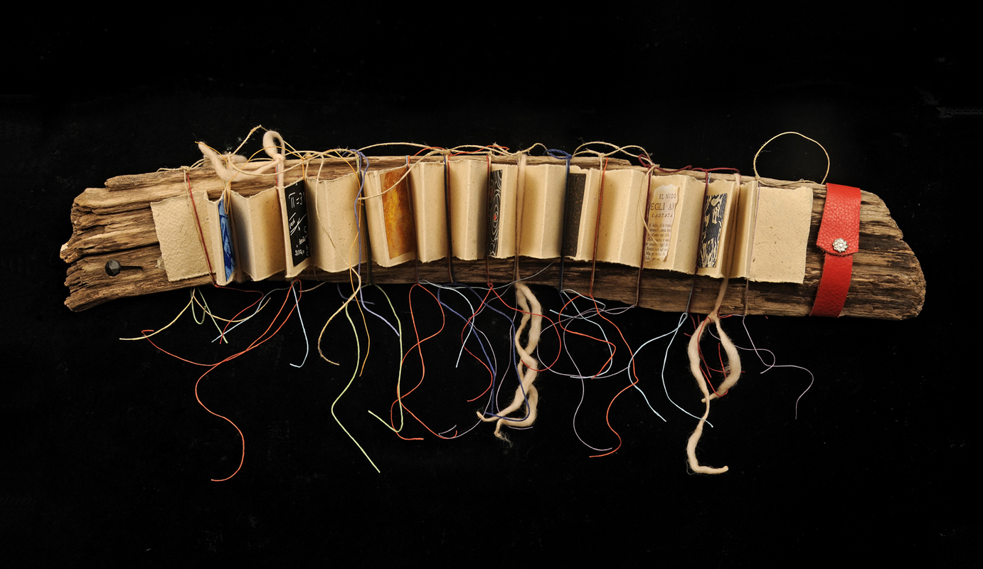 Accordion Pages Tied to Driftwood