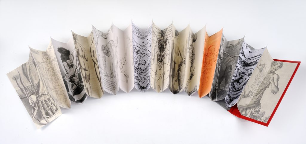 Inside pages of Butterfly Binding