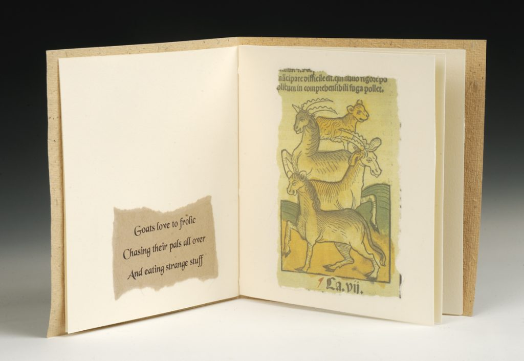 Medieval Chap Book