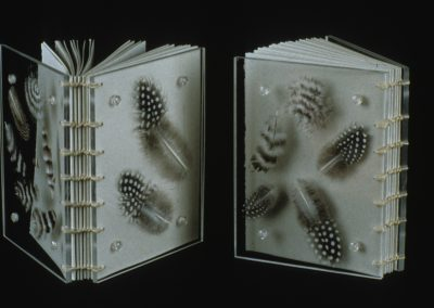 Plexiglass Book with Feathers