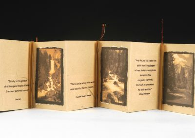 Yosemite Accordion Book