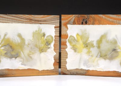 Diptych Nature Print #2